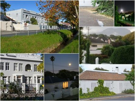 Collage of Wynberg scenes