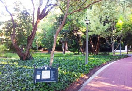 Maynardvill Park