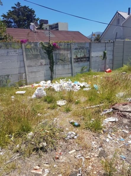 Littering in open plot in Piers Road